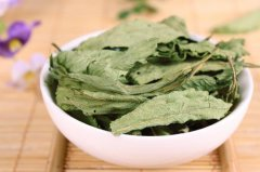 甜茶叶的功效与作用 喝甜茶叶的好处有哪些