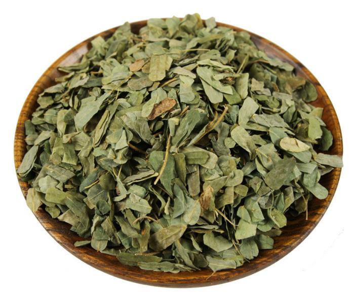 什么人不宜喝相思藤茶 喝相思藤茶的禁忌有哪些